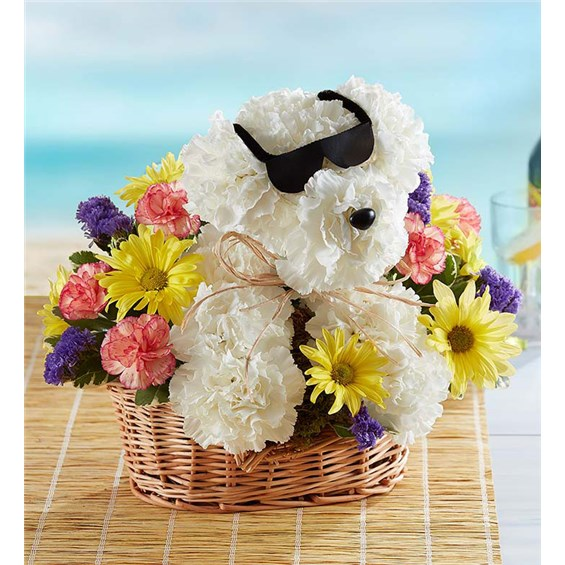 cool pup floral arrangement