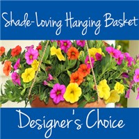shade_Hanging_Basket_choice